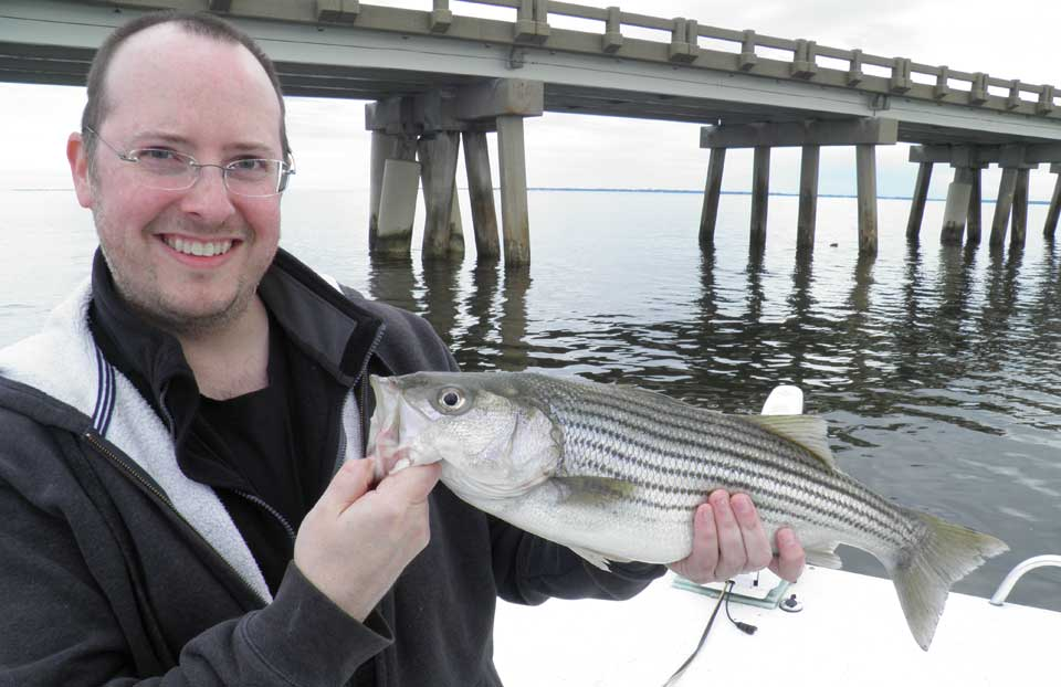 Striped bass fly fishing