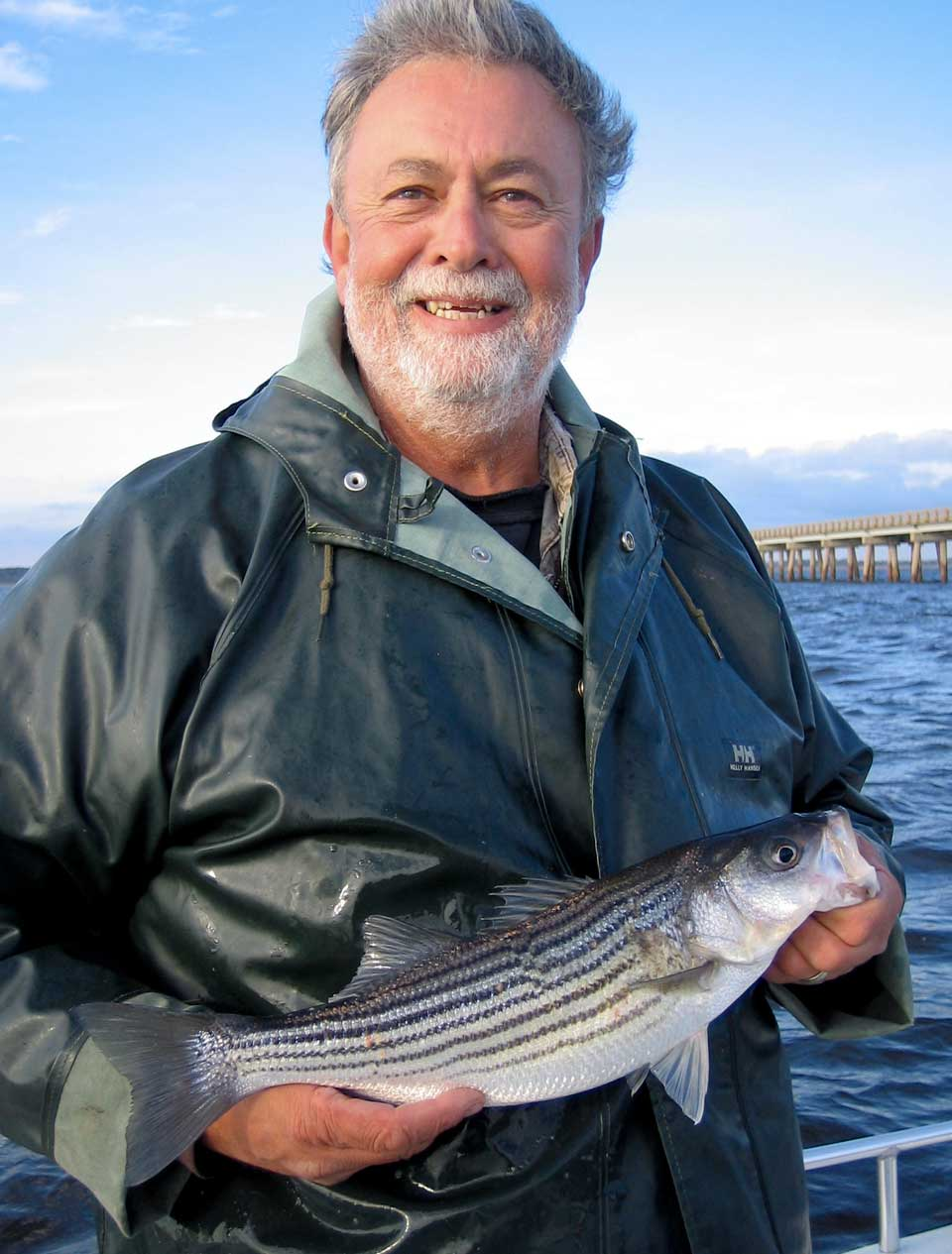 Outer banks fishing report striped bass for Striped bass fishing reports