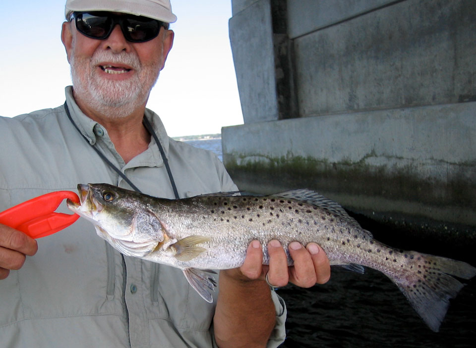 How to catch speckled trout soundside adventures for North carolina trout fishing season