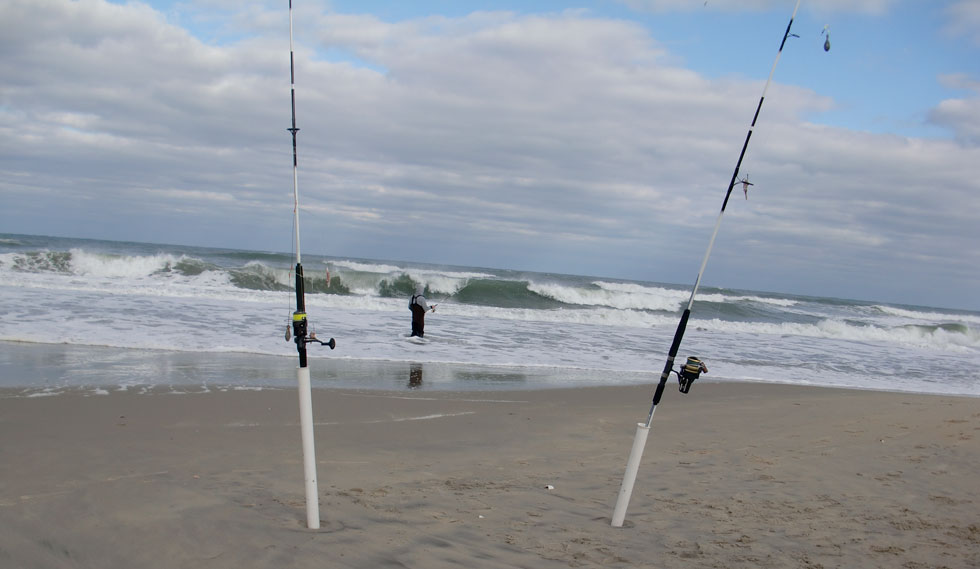 Outer banks surf fishing report oregon inlet for Nc surf fishing report