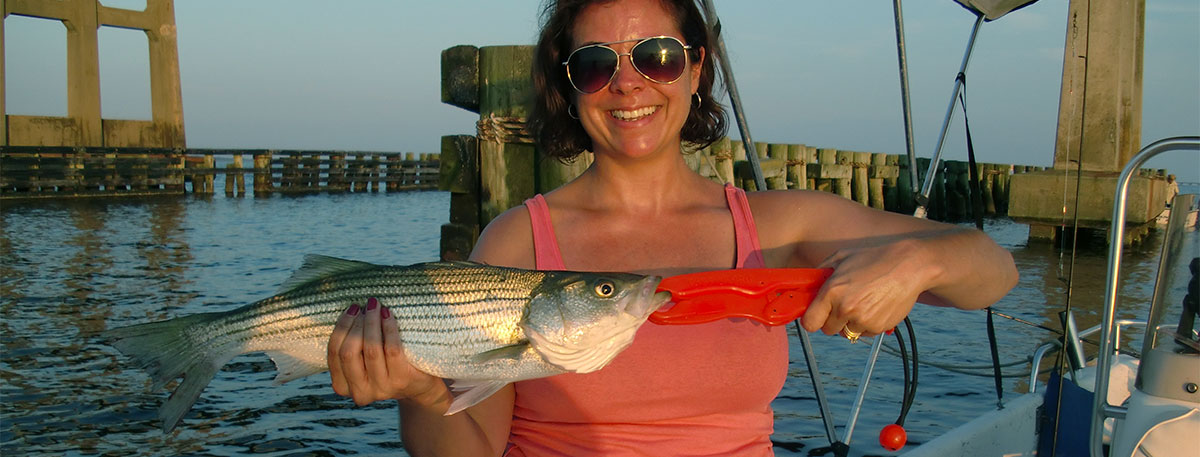 OBX Striped bass