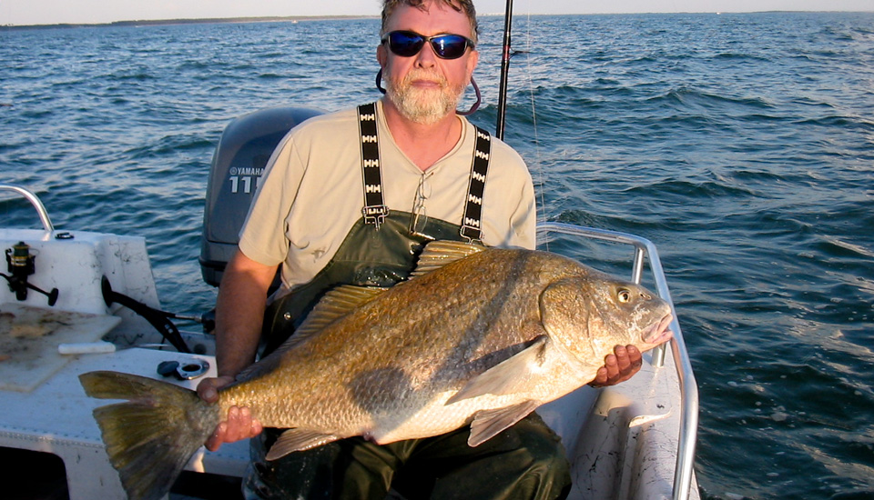 50 years of fishing soundside adventures for Outer banks sound fishing