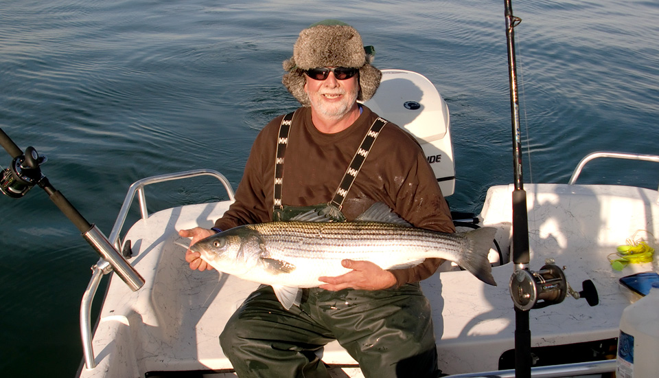 Striped bass, Outer Banks