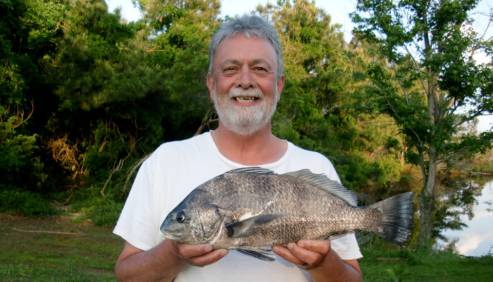 Black drum, Outer Banks